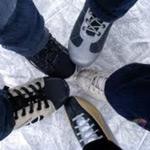 проект «Ледовый сезон»